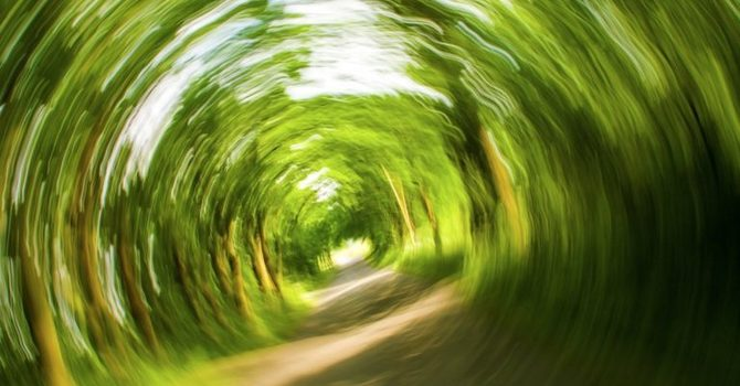 How Chiropractors Can Help With Dizziness image