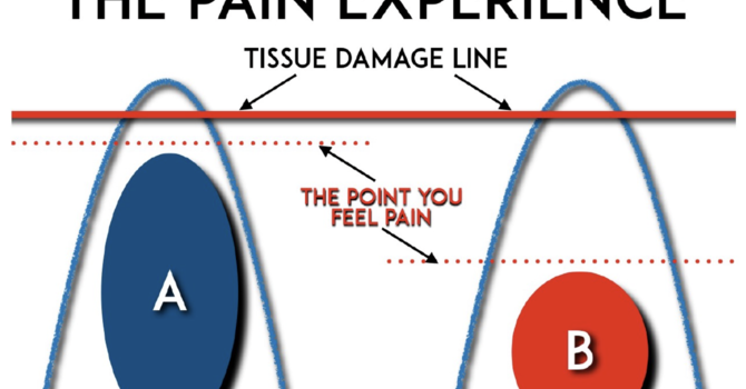 Vital New Information If You Have Long Term Pain
